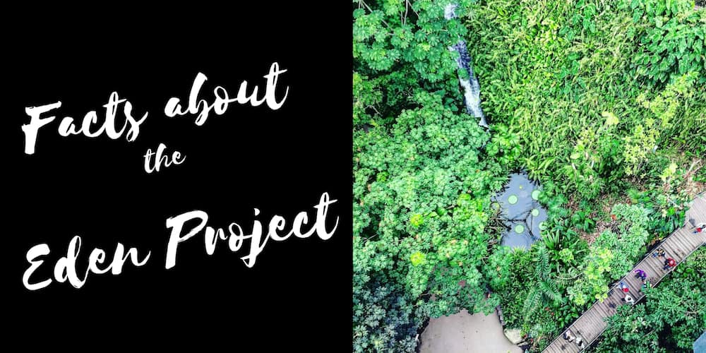 facts about the Eden Project