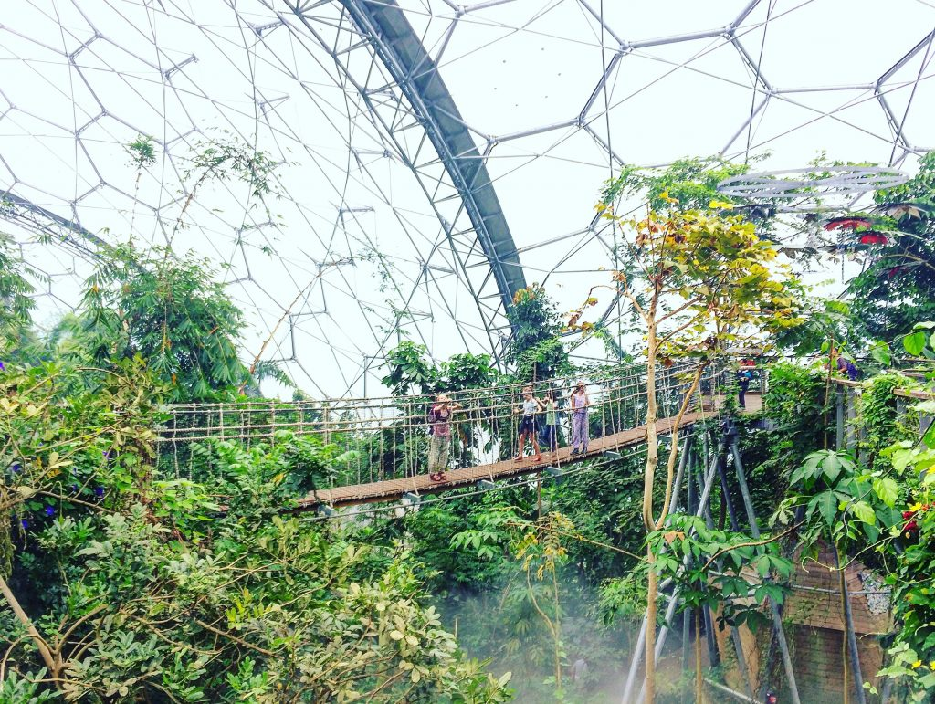 The Eden Project domes