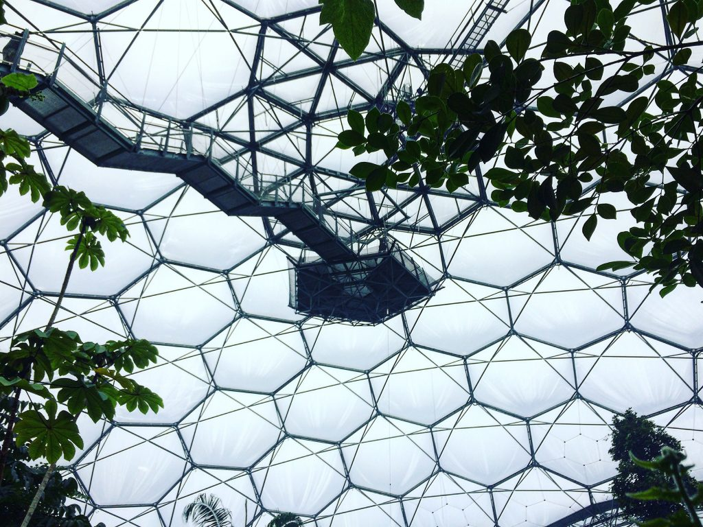 the eden project pictures