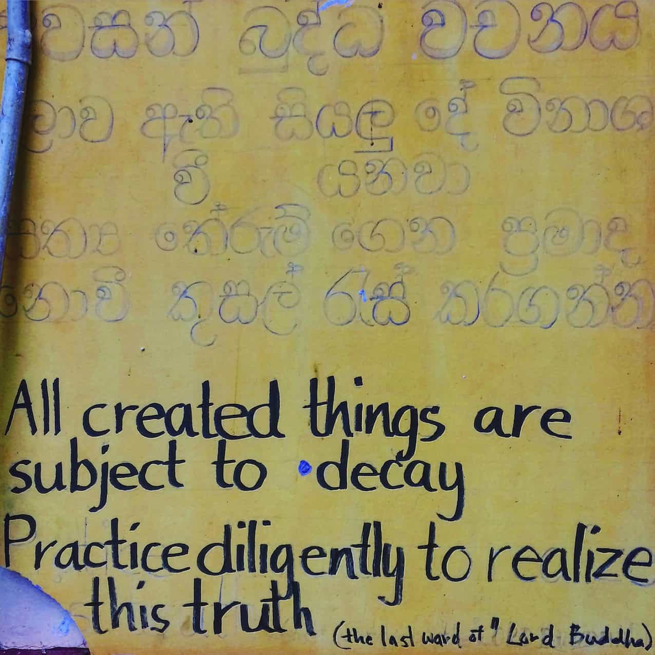 buddha words