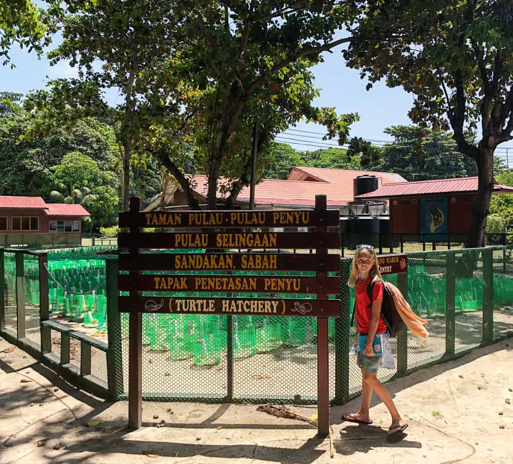 turtle island quest