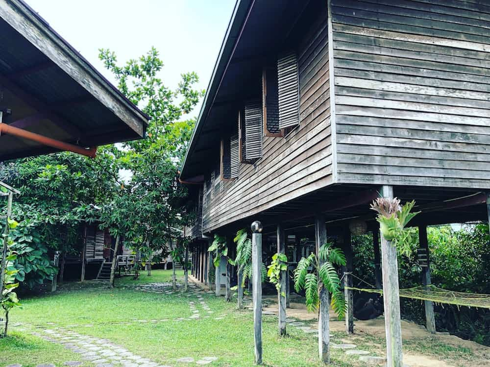 borneo accommodation
