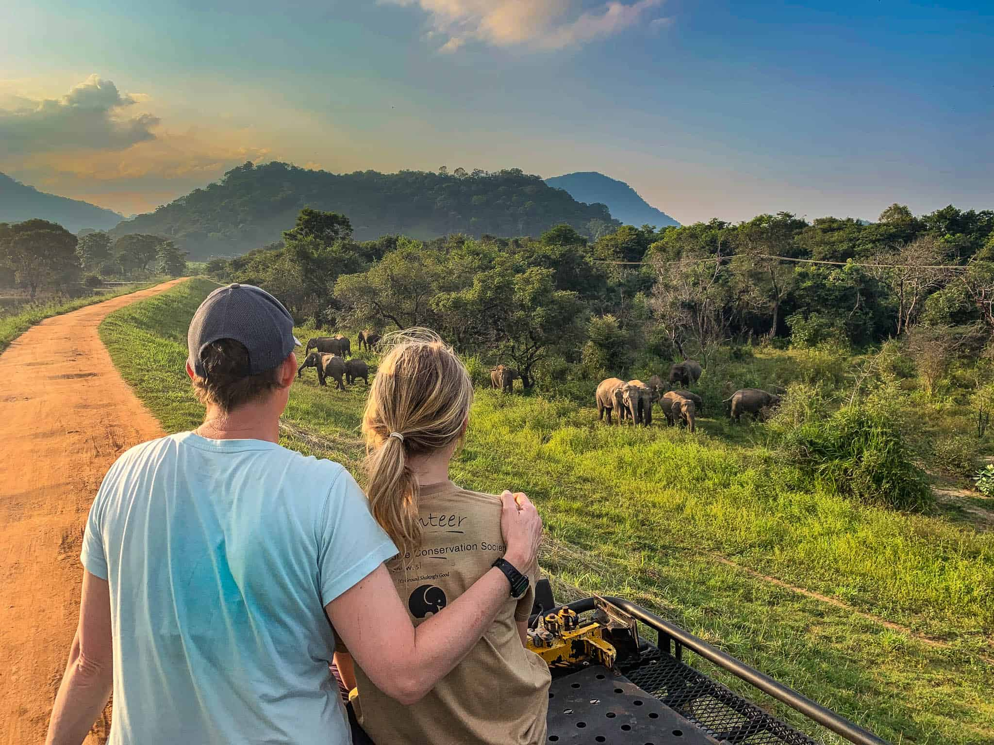 watching wild elephants in sri lanka